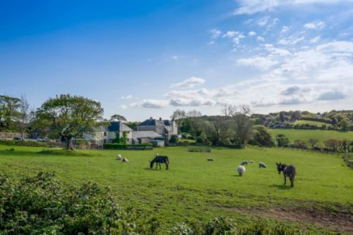 Upfront,up,front,reviews,accommodation,self,catering,rental,holiday,homes,cottages,feedback,information,genuine,trust,worthy,trustworthy,supercontrol,system,guests,customers,verified,exclusive,hedgerows,tregongeeves farm,st austell,,image,of,photo,picture,view