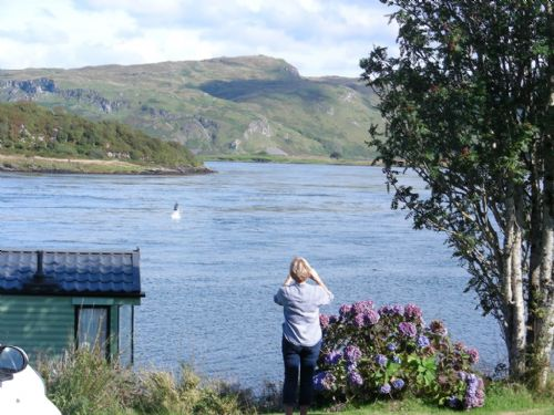 Upfront,up,front,reviews,accommodation,self,catering,rental,holiday,homes,cottages,feedback,information,genuine,trust,worthy,trustworthy,supercontrol,system,guests,customers,verified,exclusive,hh5 - heron,sunnybrae caravan park,oban,,image,of,photo,picture,view