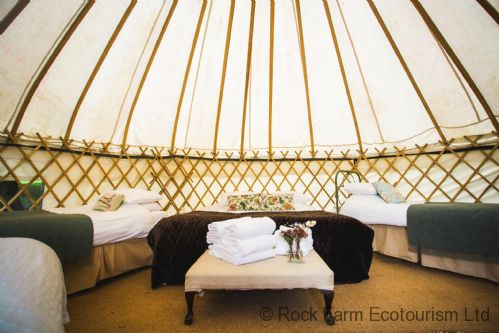 Upfront,up,front,reviews,accommodation,self,catering,rental,holiday,homes,cottages,feedback,information,genuine,trust,worthy,trustworthy,supercontrol,system,guests,customers,verified,exclusive,hazel - yurt,rock farm ecotourism ltd,slane,,image,of,photo,picture,view