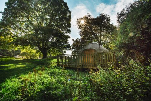 Upfront,up,front,reviews,accommodation,self,catering,rental,holiday,homes,cottages,feedback,information,genuine,trust,worthy,trustworthy,supercontrol,system,guests,customers,verified,exclusive,yew - yurt,rock farm slane,slane,,image,of,photo,picture,view