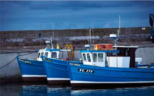 Situated just yards from Seahouses Harbour