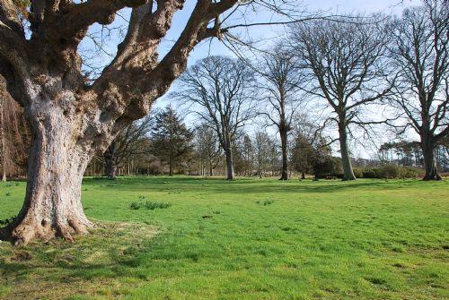 Elie house grounds