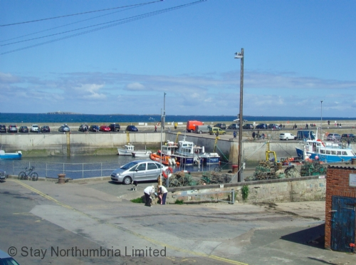 Bustling Seahouses Harbour
