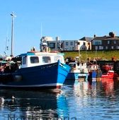 Seahouses harbour less than a mile