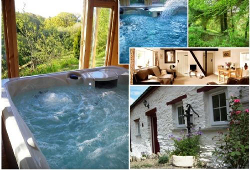 Upfront,up,front,reviews,accommodation,self,catering,rental,holiday,homes,cottages,feedback,information,genuine,trust,worthy,trustworthy,supercontrol,system,guests,customers,verified,exclusive,blaenfforest cottage,blaenfforest cottage holidays,newcastle emlyn,,image,of,photo,picture,view