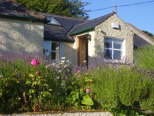 Upfront,up,front,reviews,accommodation,self,catering,rental,holiday,homes,cottages,feedback,information,genuine,trust,worthy,trustworthy,supercontrol,system,guests,customers,verified,exclusive,the cottage, dublin, sleeps 3,irish self-catering federation (letsgoselfcatering.com),dublin 18,,image,of,photo,picture,view