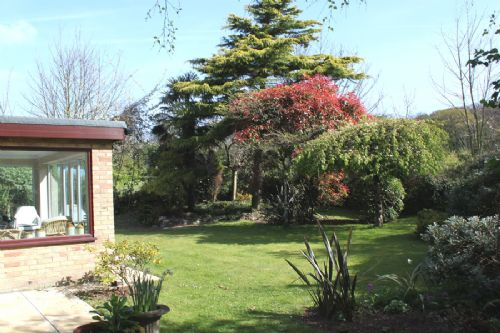 garden and sun room in Cromer