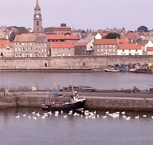 Upfront,up,front,reviews,accommodation,self,catering,rental,holiday,homes,cottages,feedback,information,genuine,trust,worthy,trustworthy,supercontrol,system,guests,customers,verified,exclusive,mill wharf,border holiday homes,berwick-upon-tweed,,image,of,photo,picture,view