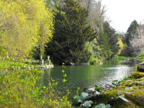 Bonchurch Village Pond close by