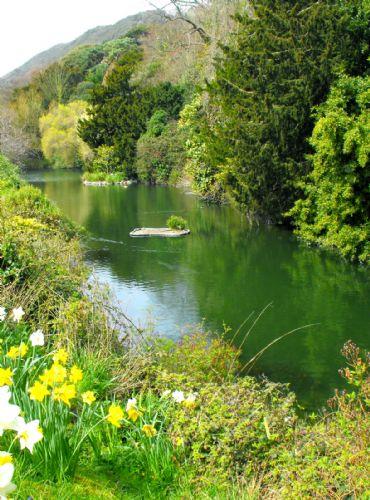 Large closeby wildlife pond...