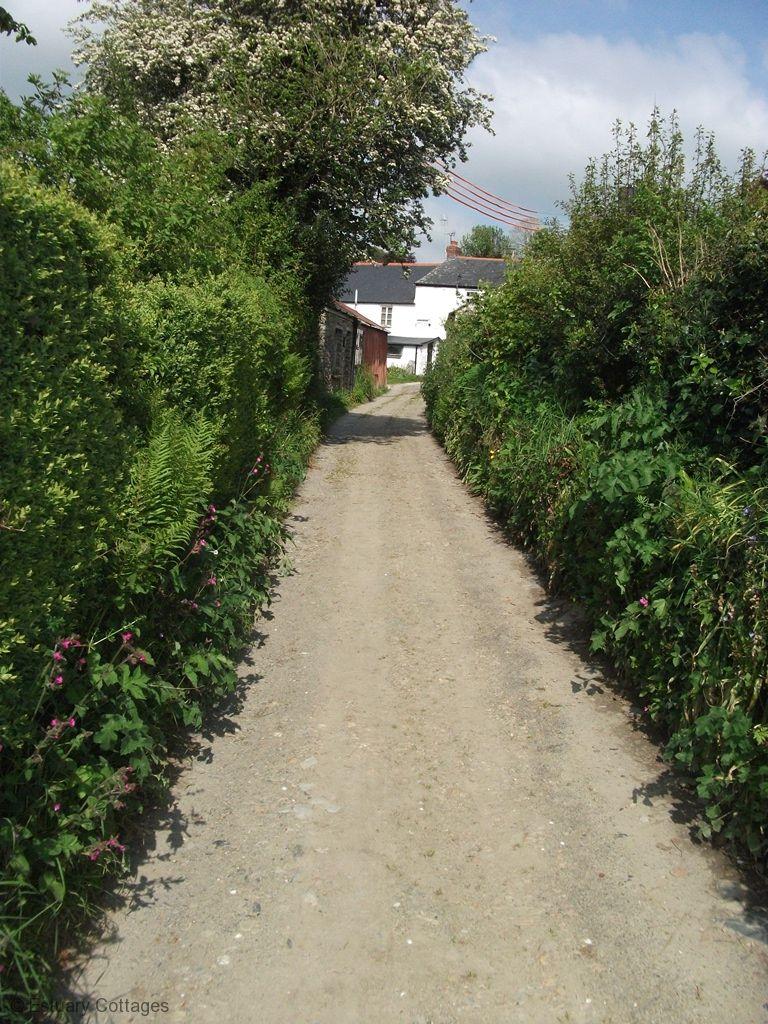 Lane leading to garden