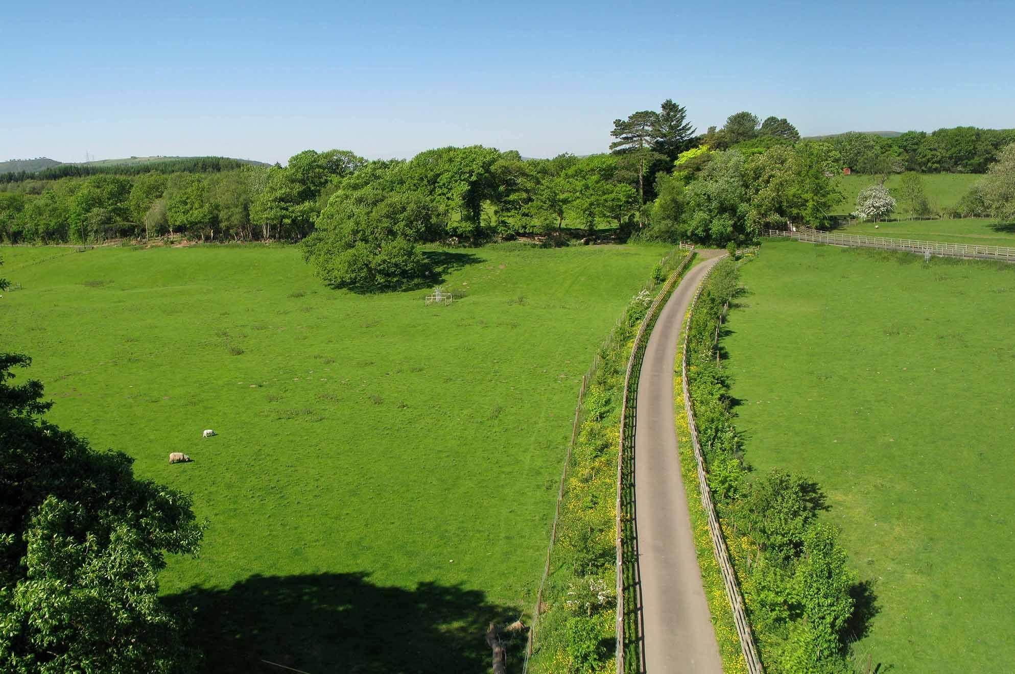 Approach driveway through parkland