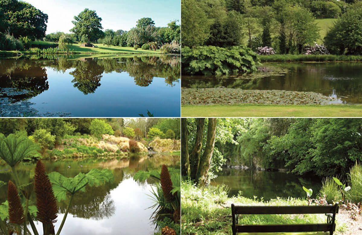 The first, second and third lakes in the Bonython Estate Gardens