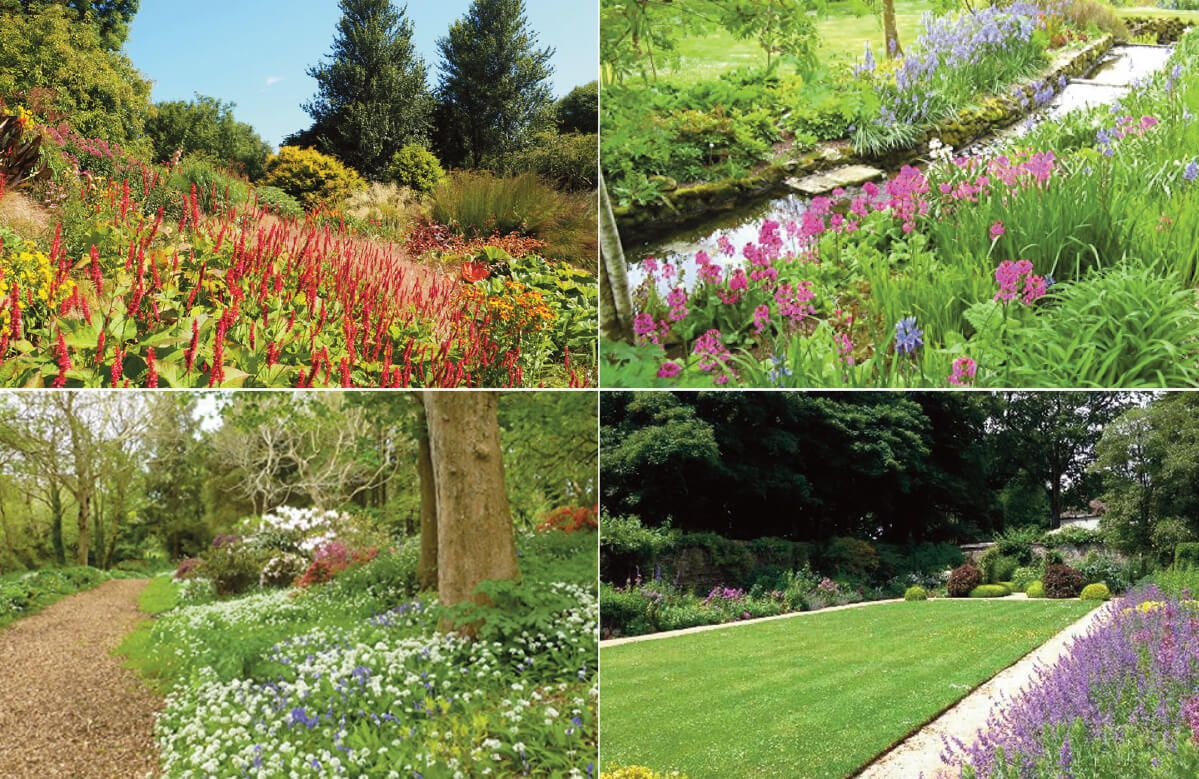 The hot garden, stream cascade, valley garden & walled garden in the Bonython Estate Gardens