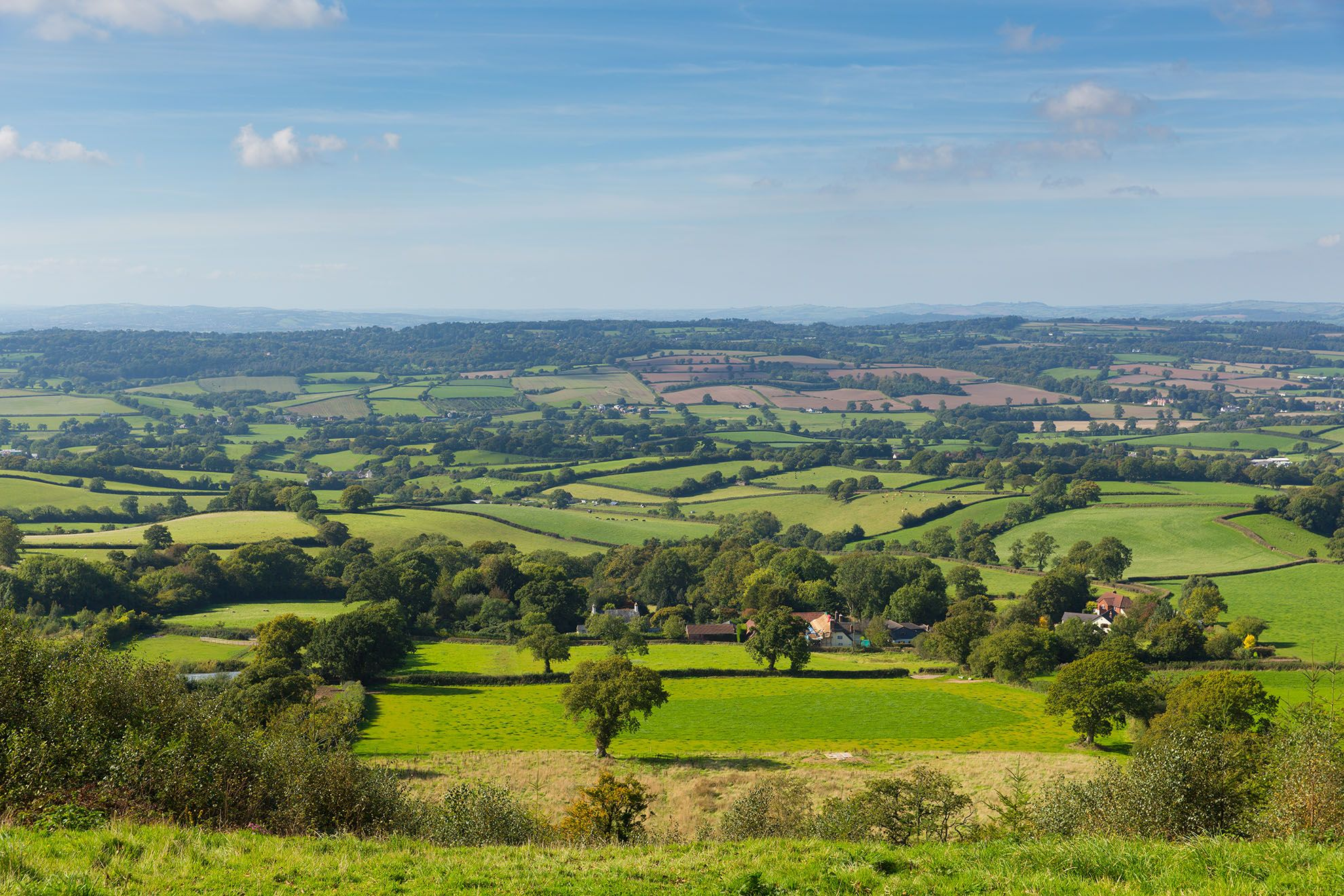 The Blackdown Hills nearby form a tranquil landscape on the Devon and Somerset border