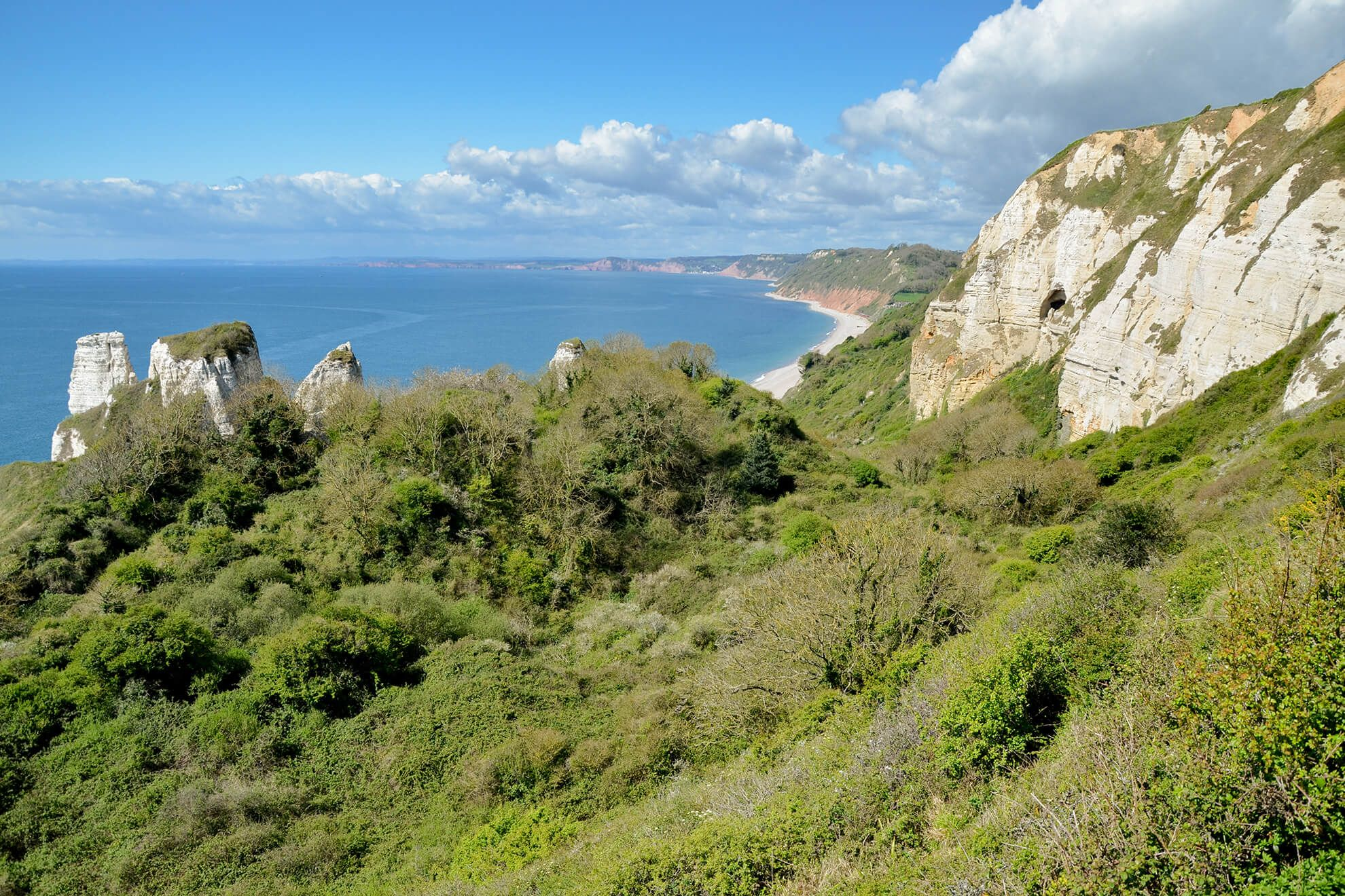 The walk from Beer to Branscombe Mouth, taking in the Hooken Undercliff, is one of Britain's most stunning walks