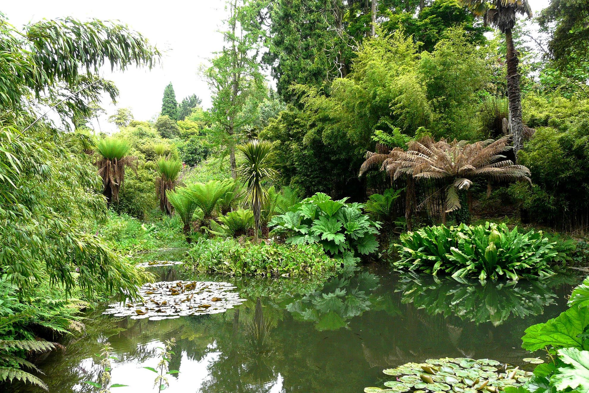 Explore over 200 acres at The Lost Gardens of Heligan