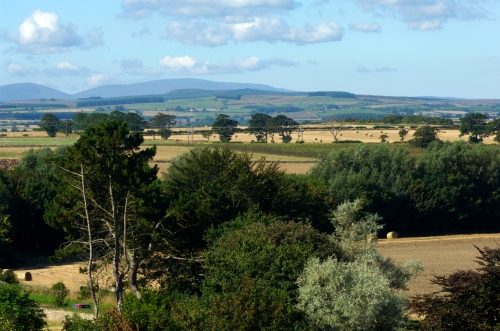 local views to the Cheviot Hills - on a clear day over 20 miles