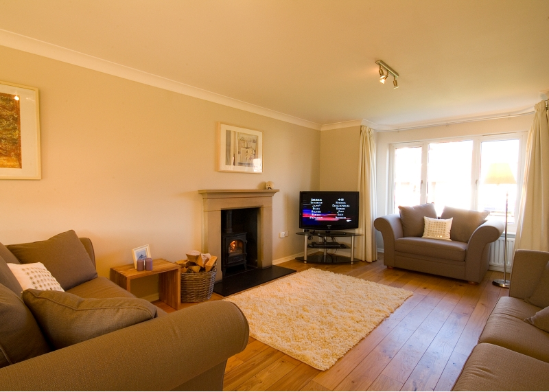The lounge with Freeview TV and log burner and real wood floor