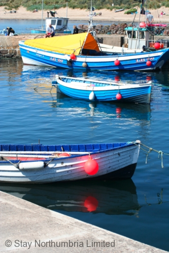 Cobles (traditional fishing boats) in Beadnell Harbour