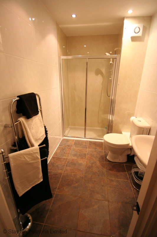 Downstairs Large shower room adjacent to bedroom (not ensuite)