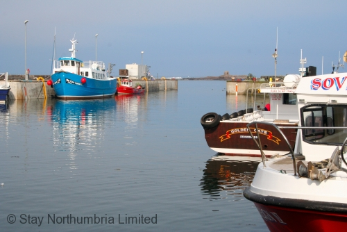 Seahouses harbour just yards away