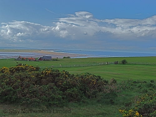 Budle Bay just 1 mile from Spindlestone