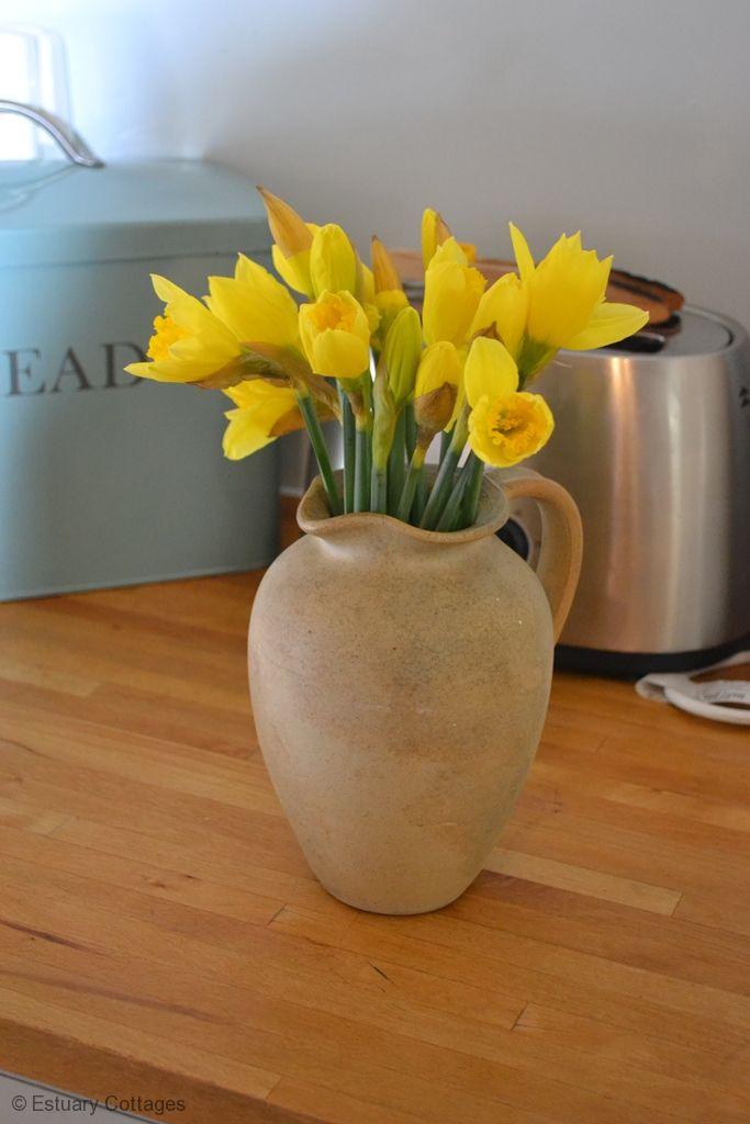 Some Cornish Spring sunshine!