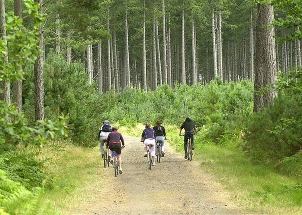 On the doorstep is Thetford Forest Park which offers 50,000 acres of safe cycling and walking trails