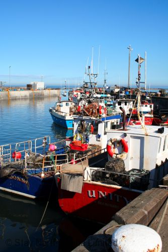Seahouuses Harbour fishing boats