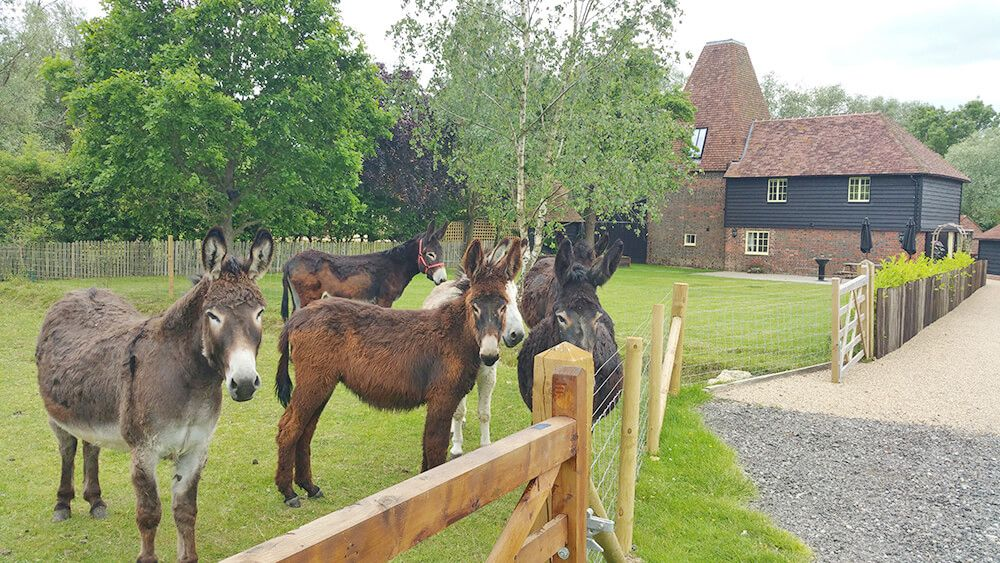 Step back in time and enjoy a stay at Larkin Oast on Darling Buds Farm, the home of Ma and Pop Larkin in The Darling Buds of May ITV series
