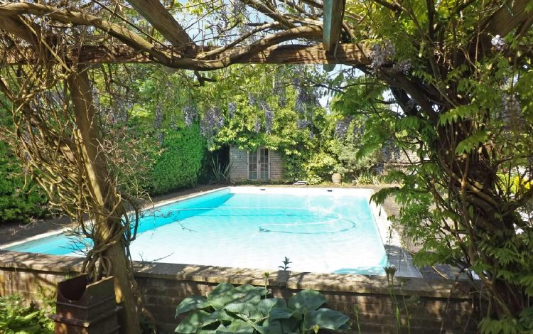 Swimming pool, seen through the pergola