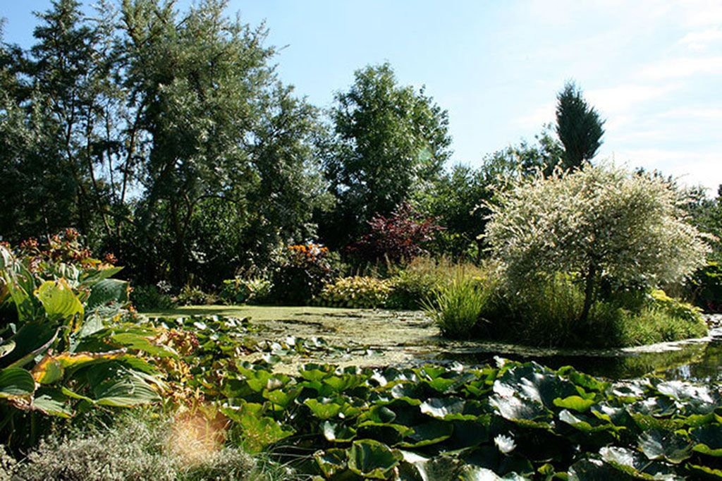 The beautiful shared grounds have two ponds perfect for watching birds and fishes