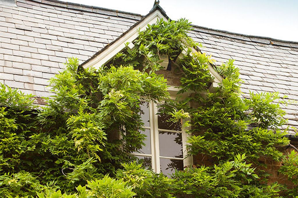 The cottage oozes classic period charm with mullioned windows