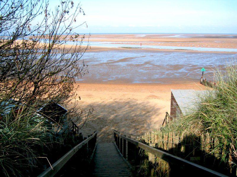 Pinkleton | Wells beach