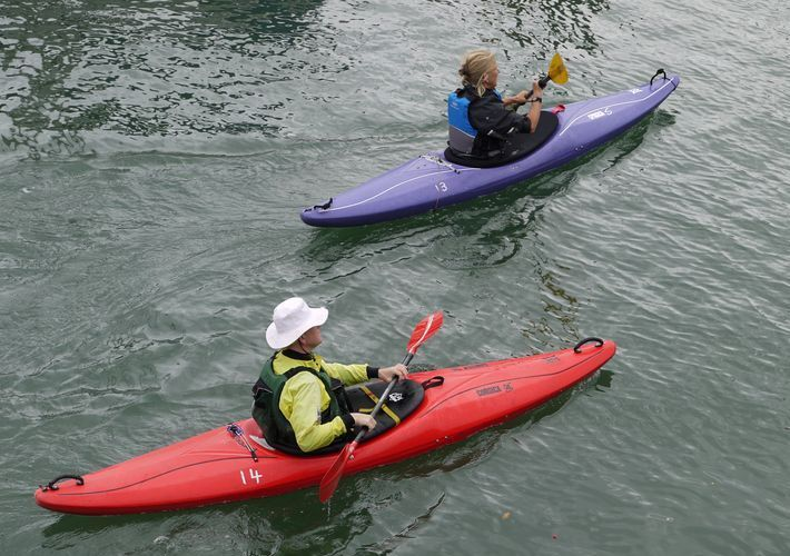 Frogmore Creeks leads onto Salcombe Estuary (great spots for kayaking)