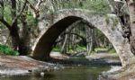Venetian Bridge in Troodos