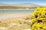 Loch Fleet, a short walk from the cottage