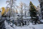 Duchally Estate -  Winter Wonderland Duck Pond