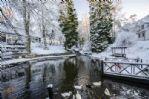 Duck Pond Winter