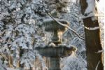 Duchally Estate -  Winter Wonderland fountain 2