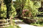 Mangerton Self Catering Chalet 1, Killarney (South West)