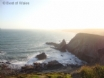 Dog-friendly cottage near the Pembrokeshire Coastal Path