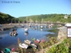 A mile from your holiday cottage - Solva harbour, restaurants & pubs