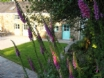 Holiday cottage, South Wales near Brecon Beacons & Gower