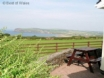Holiday cottage, Newport Pembrokeshire with stunning coastal views