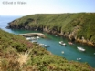 Porthclais Harbour in St Davids