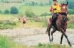 Llanwrtyd Wells Man v Horse Race
