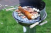 Summer BBQs in the garden