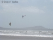 Kite surfers at Cefn Sidan beach (20 min walk from the cottage)